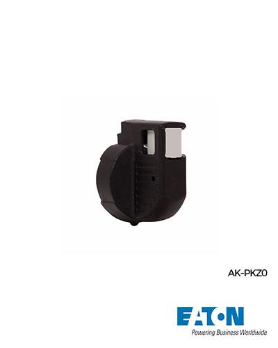 299D.-AK-PKZ0_R-logo
